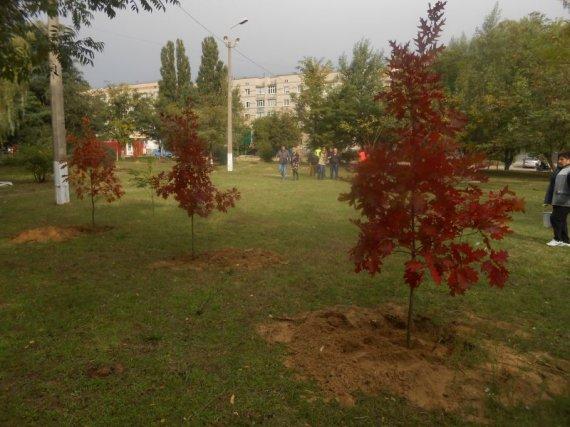 Про магазин АТБ в Цюрупинске, субботник и развитие города (фото)
