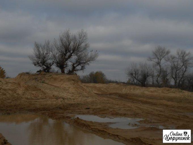 Цюрупинск после ландшафтного дизайна (фото)