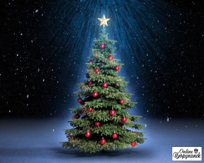 Пришло время цюрупинчанам подумать о новогодней ёлке. Где и за сколько можно купить - читаем тут