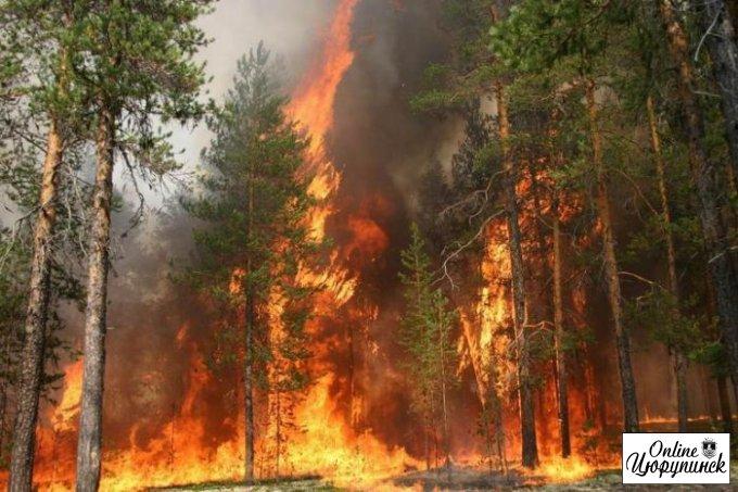 Увага! Пожежонебезпечний період в лісах