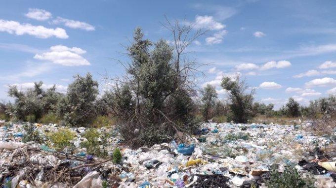Высыпали мусор нам под окна и забыли о нем - ждем пока загорится (фото)