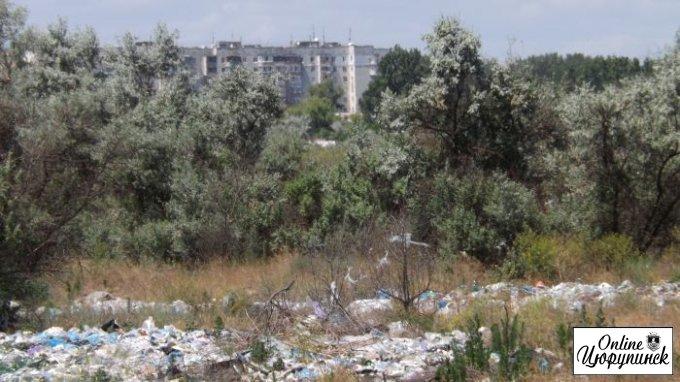 Херсонский административный суд удовлетворил «клопотання» цюрупинской мэрии