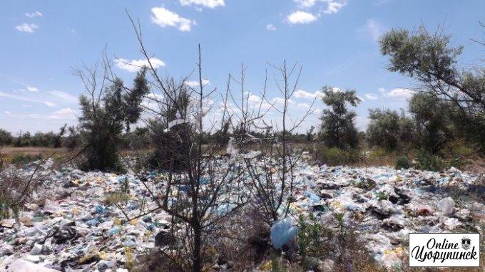 Цюрупинский мусор в очередной раз увидит вся Украина