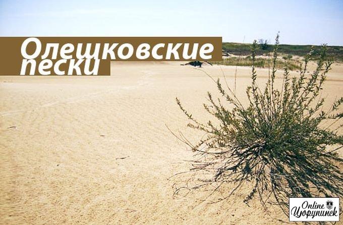 Страсти по цюрупинским пескам (фото)