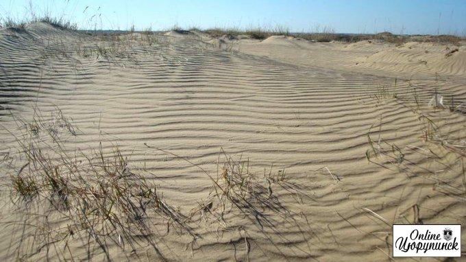 Новый губернатор Херсонщины остановит песчаную мафию или же возглавит ее?