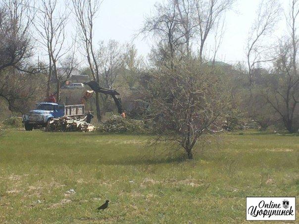 Зачем нам деревья и места для отдыха в Цюрупинске? (фото)