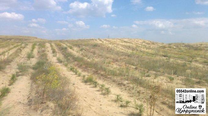 Боротьба з опустелюванням та посухами