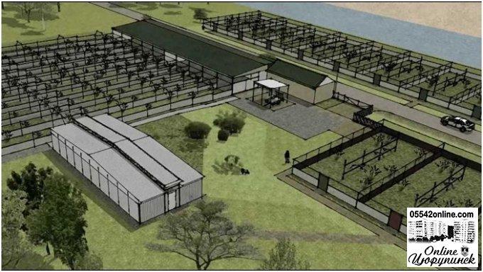 Ідея для бізнеса - будівництва фазанячої ферми на Херсонщині