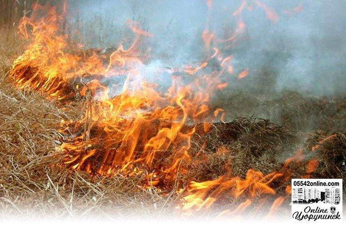 Блискавка  стала причиною виникнення пожежі