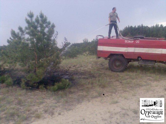 Першочергове завдання – охорона лісу від пожеж