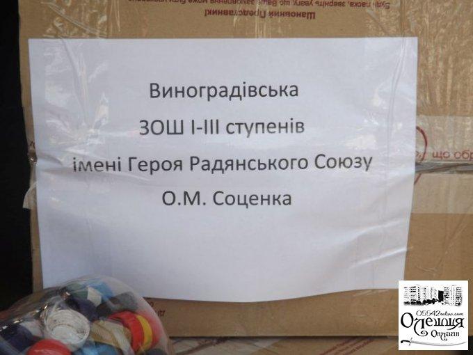 Школьники из села Виноградово приняли участие во всеукраинской волонтерской инициативе