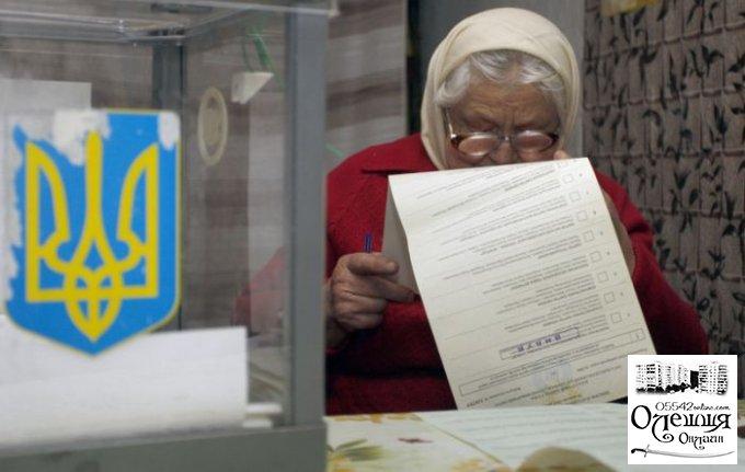 В городской совет Цюрупинска проходит 8 партий