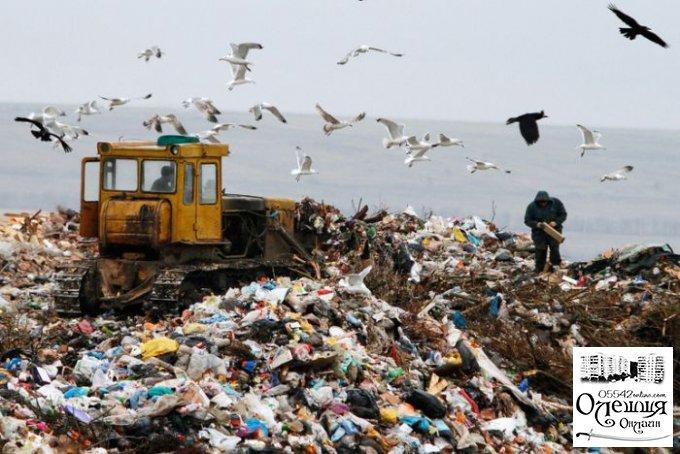 Заметка о политическом мусоре в Цюрупинске