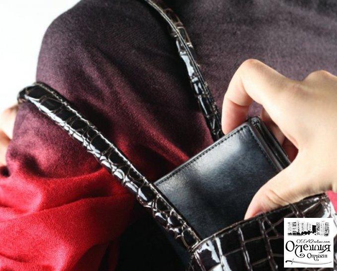 Грабитель совершил кражу долларов из женской сумки