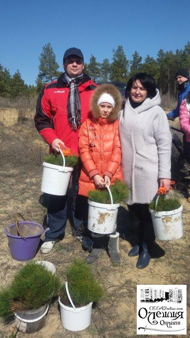 Весна - час садити ліс!