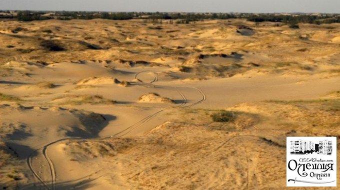 Частина національного парку «Олешківські піски» є замінованою, — екологиня