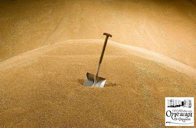 У жителя Олешек украли 70 тонн зерна