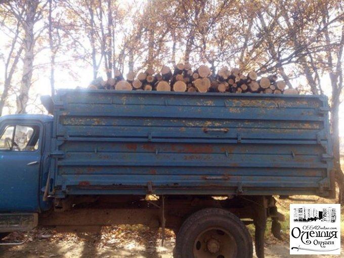 Олешковские полицейские остановили грузовой автомобиль с древесиной