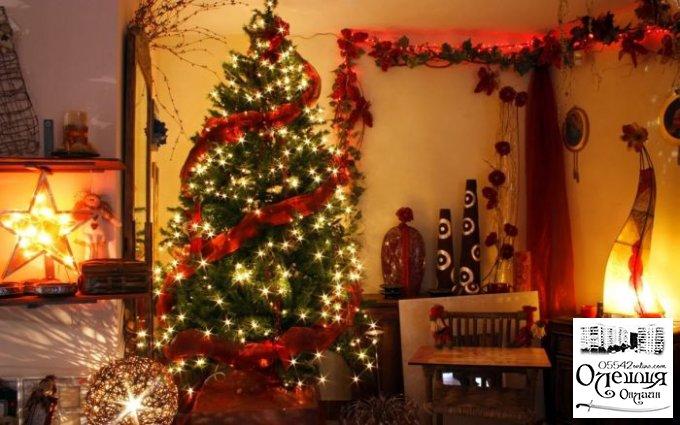 Жителів міста Олешки запрошують на відкриття новорічних свят