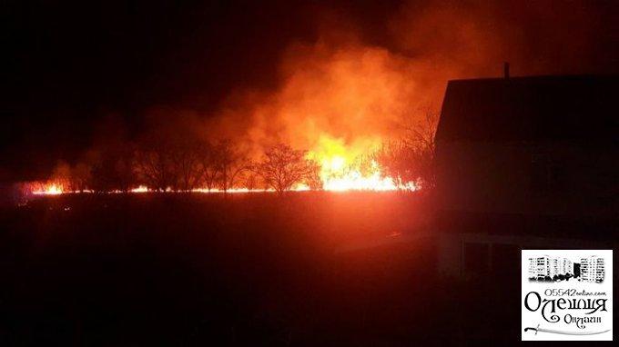 Масштабный пожар в Олешковском районе: огонь приблизился к дачам