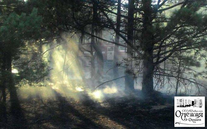 В Олешковском районе три раза за сутки тушили пожар