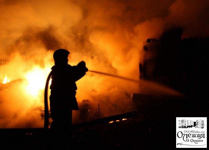 Вночі в Олешках палав будинок