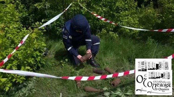 В Олешківському районі знайдено сучасні боєприпаси