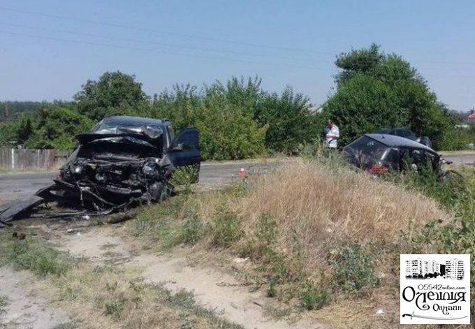 Жертвами кровавого ДТП возле Олешек стали шесть человек