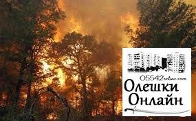 Палають ліси Олешшя