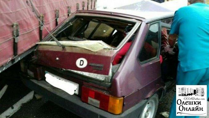 Под Олешками грузовик «Рено» врезался в ВАЗ. Погибли муж и жена. Их дочь-подросток в больнице