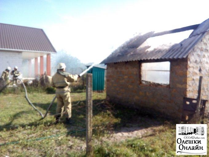 В Солонцах спасли дом от пожара