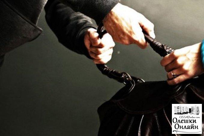 В Олешковском районе задержан подозреваемый в совершении грабежа