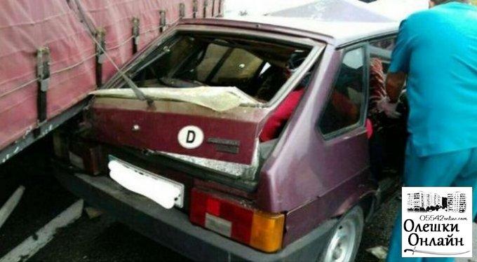 Виновника смертельного ДТП в Олешковском районе посадили под домашний арест, а его грузовик арестовали