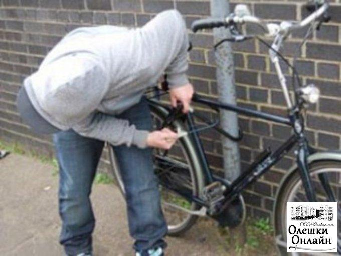 Пенсионер, отнявший в Олешках у парня велосипед, попал под статью за грабеж