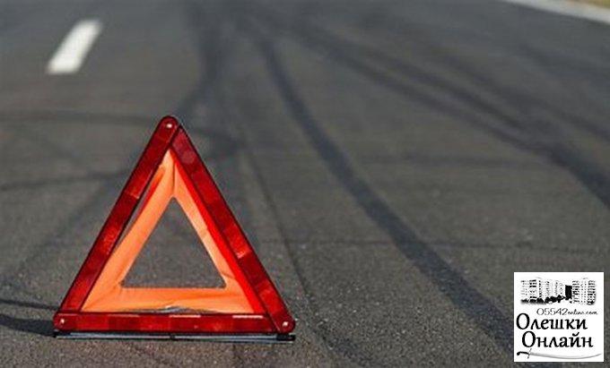 На выезде из Олешек микроавтобус сбил 65-летнего пешехода