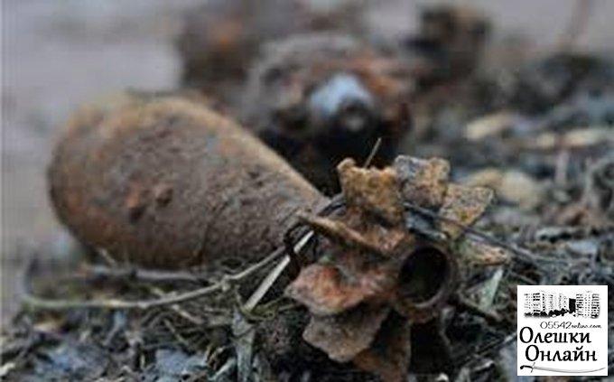 В Олешковском районе у ж/д переезда нашли мину