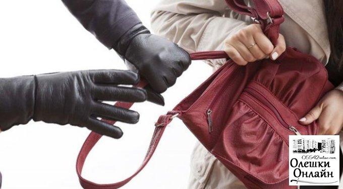 В Олешковском районе бывший осужденный избивал и грабил женщин