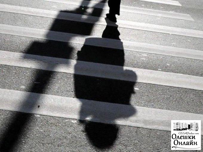 Суд арестовал «Шкоду», которая насмерть сбила женщину в Олешковском районе