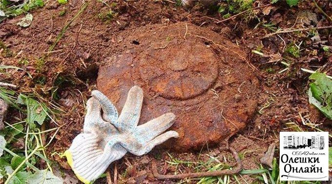 Жители Олешковского района обнаружили противотанковую мину и артиллерийский снаряд