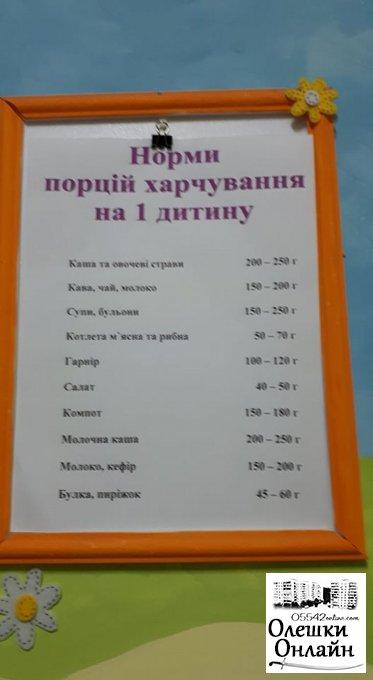 Організація харчування в олешківських міських ДНЗ