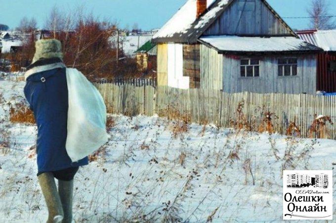 В Олешковском районе полицейские задержали дачного вора