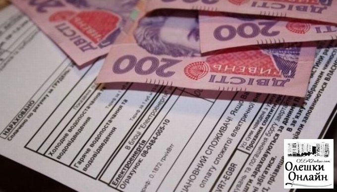 Громадські роботи для роз'яснення порядку надання субсидій в Олешках