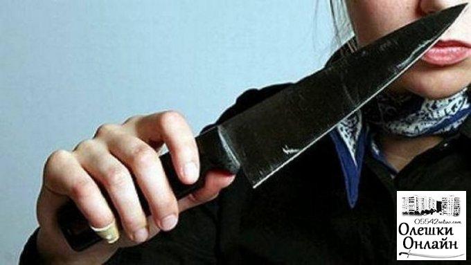 Жительнице Олешек, которая убила своего сожителя, грозит до 10 лет лишения свободы