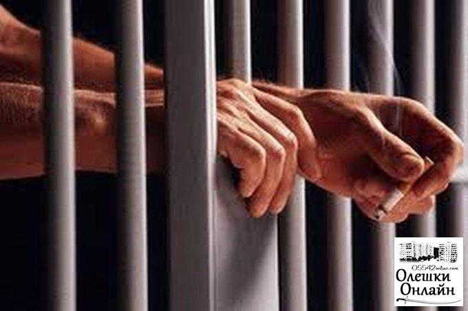 Олешковский грабитель женщин осужден на 5 лет лишения свободы