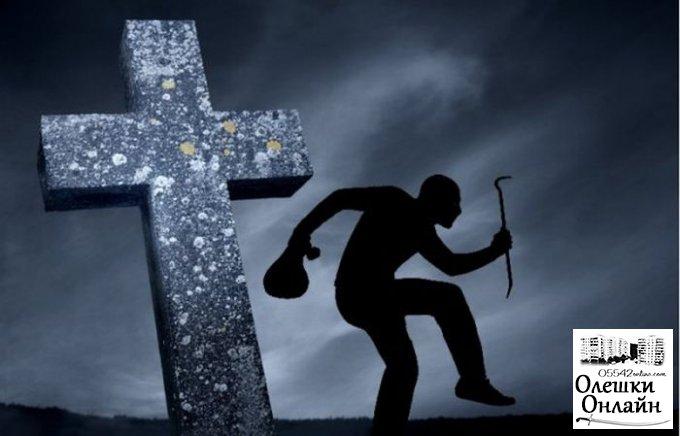 Кладбищенского вора из Олешек будут учить работать
