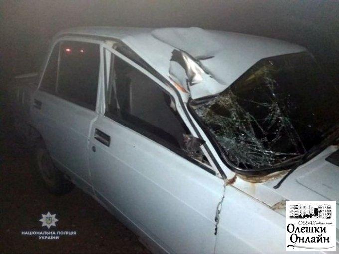 В Олешковском районе ночью «пятерка» насмерть сбила 2-х мужчин, которые ремонтировали машину