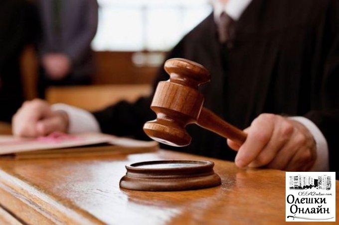 Житель Олешковского района осужден на 3 года 6 месяцев заключения за разбой