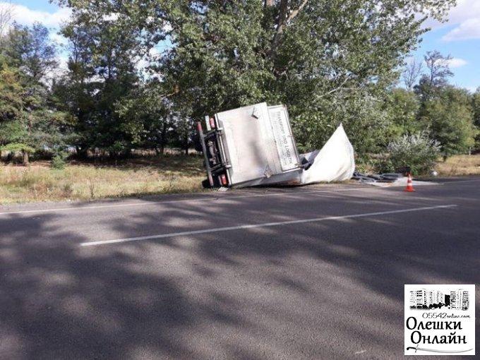 В Олешковском районе произошло смертельное ДТП