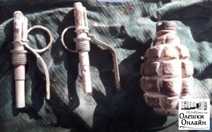 В Олешковском районе пьяный мужчина пытался продать односельчанам гранату