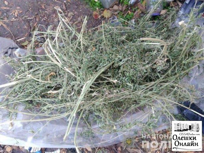 Полицейские изъяли килограмм наркотиков у жителя Олешек